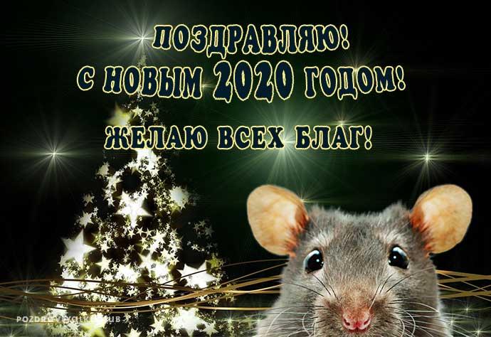 Открытка С Новым 2020 годом поздравляю желаю всех благ год крысы
