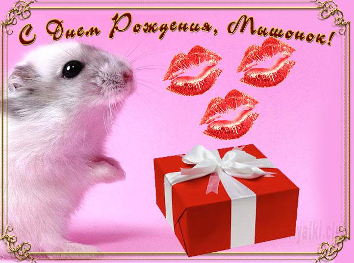 Открытка С Днем Рождения Мышонок